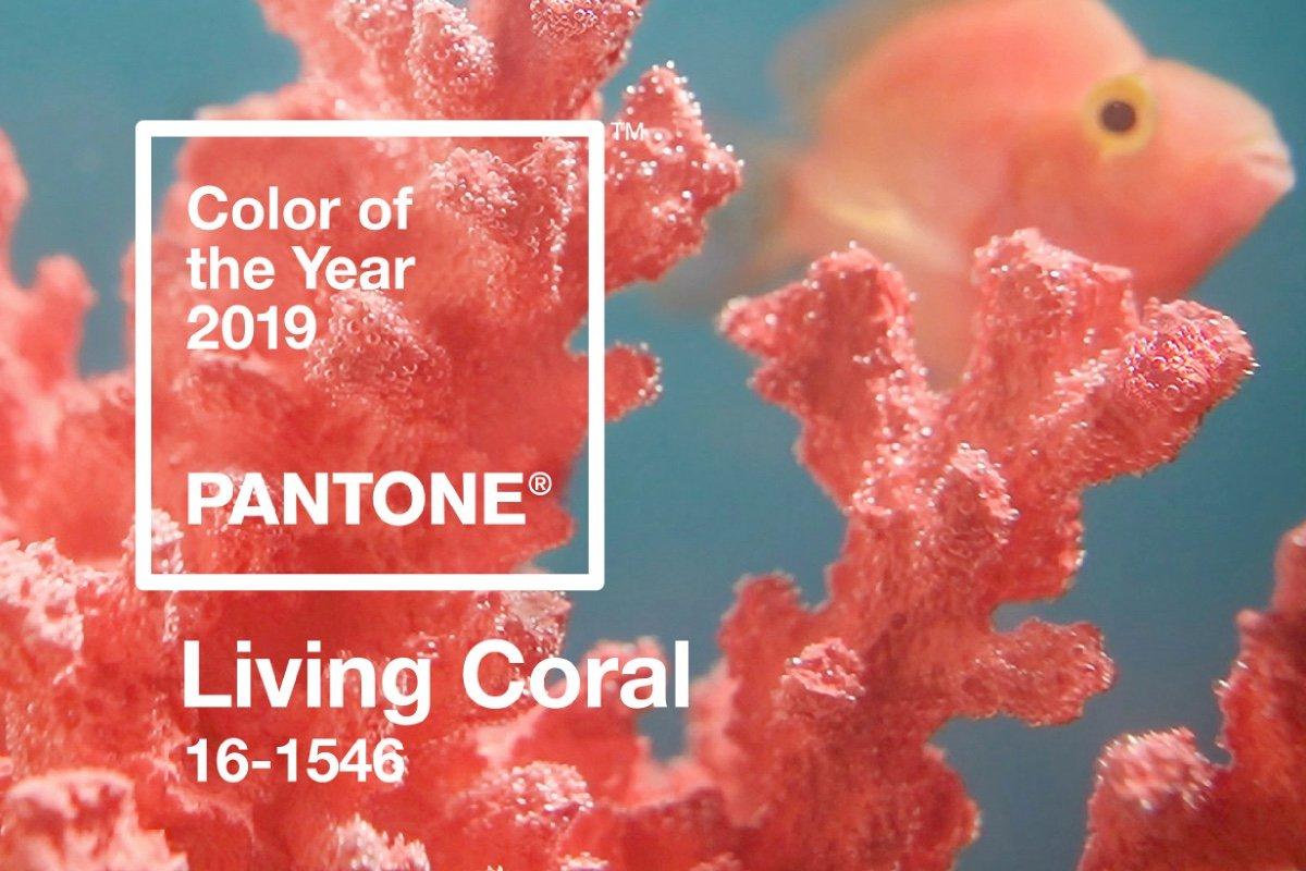 Pantone Yılın Rengi: Living Coral