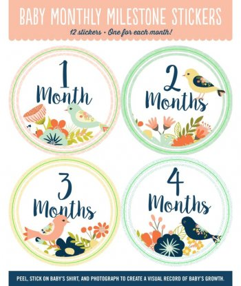 Peter Pauper - Baby Milestone Stickers Birds