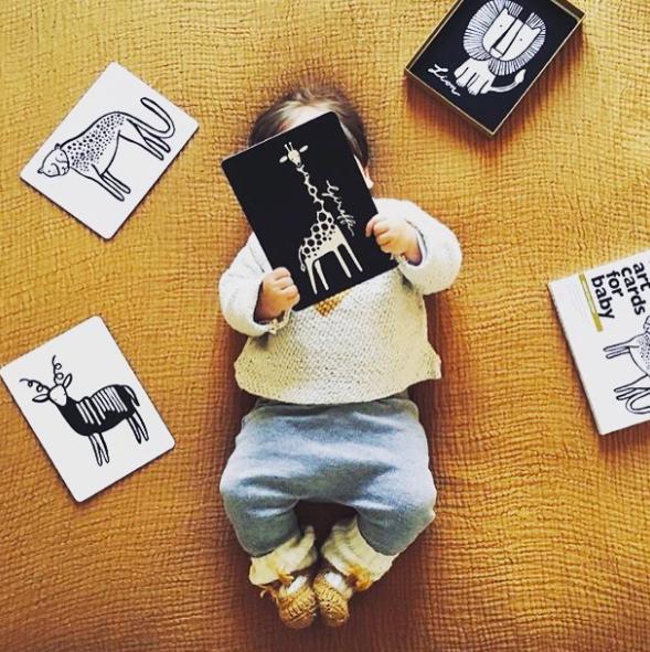 Wee Gallery Bebek Gelişim Kartları - Farm (Baby Art Cards) 2
