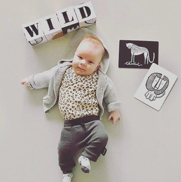 Wee Gallery Bebek Gelişim Kartları - Farm (Baby Art Cards) 3