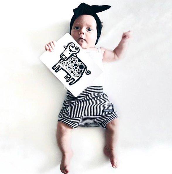 Wee Gallery Bebek Gelişim Kartları - Farm (Baby Art Cards) 6