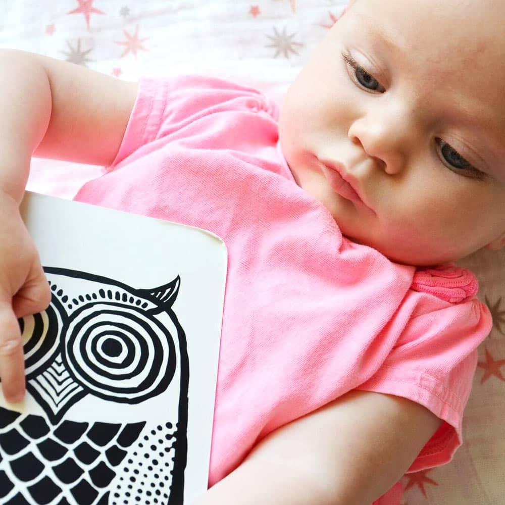 Wee Gallery Bebek Gelişim Kartları - Farm (Baby Art Cards) 1